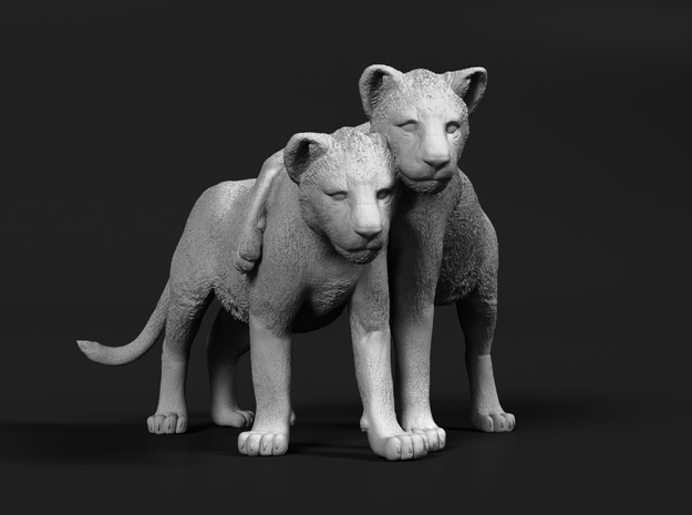 Lion 1:20 Cubs distracted while playing in Smooth Fine Detail Plastic