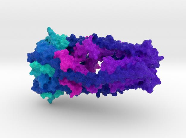 Mitochondrial Calcium Uniporter in Natural Full Color Sandstone