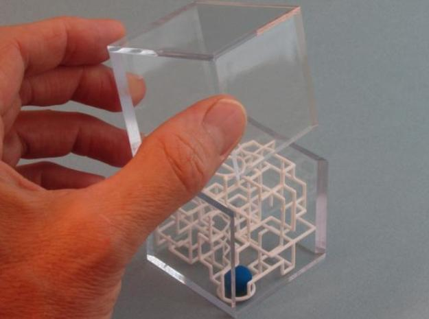 """Bare Bones"" - 3D Rolling Ball Maze in Clear Case( 3d printed Slide on Case Top"