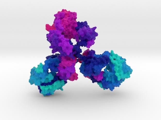 Immunoglobulin Antibody in Natural Full Color Sandstone