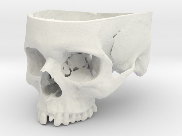 Human Skull Bowl (Life Size) in White Natural Versatile Plastic