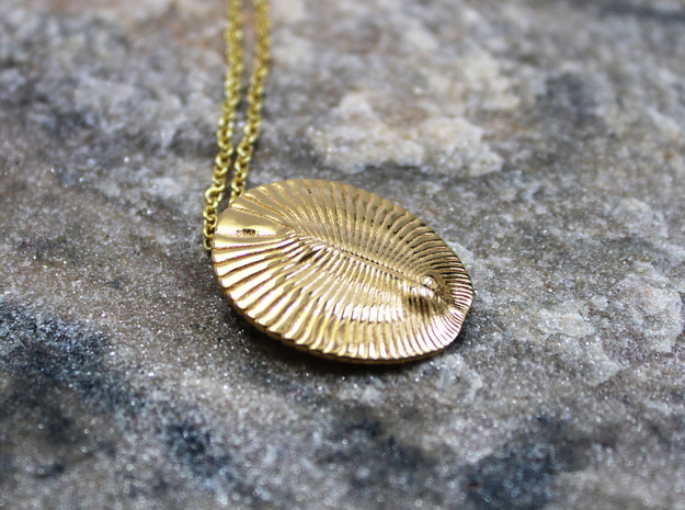 Dickinsonia Fossil Pendant - Paleontology Jewelry in 14k Gold Plated Brass