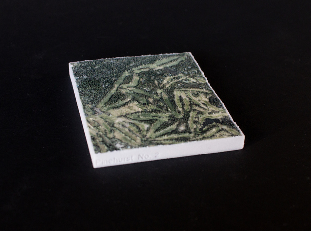 Pinehurst No. 2, North Carolina, USA, 1:20000 in Full Color Sandstone