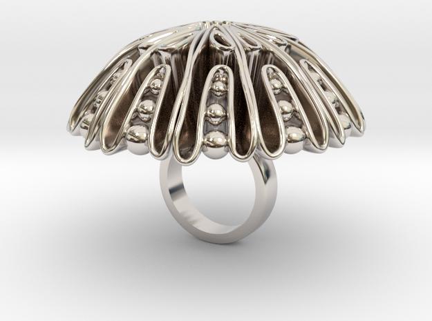 Strongolo - Bjou Designs in Rhodium Plated Brass