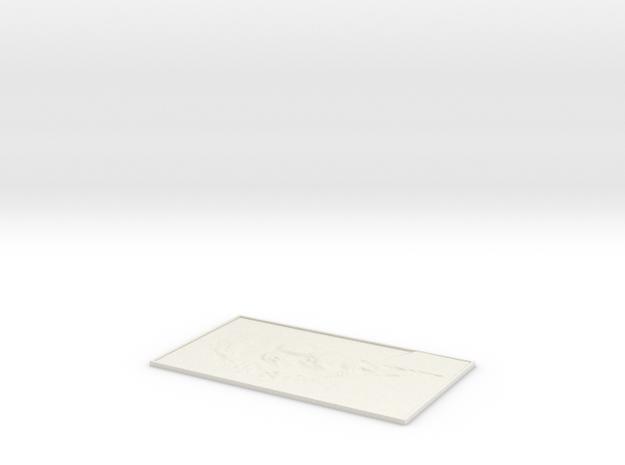 Albert Einstein Prestige Lithophane in White Natural Versatile Plastic