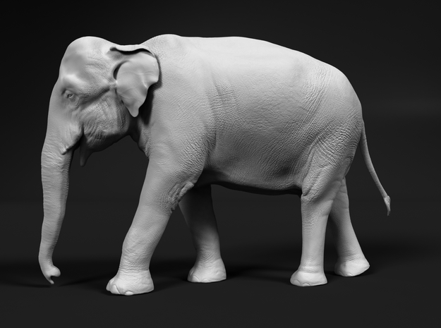 Indian Elephant 1:48 Walking Female in White Natural Versatile Plastic