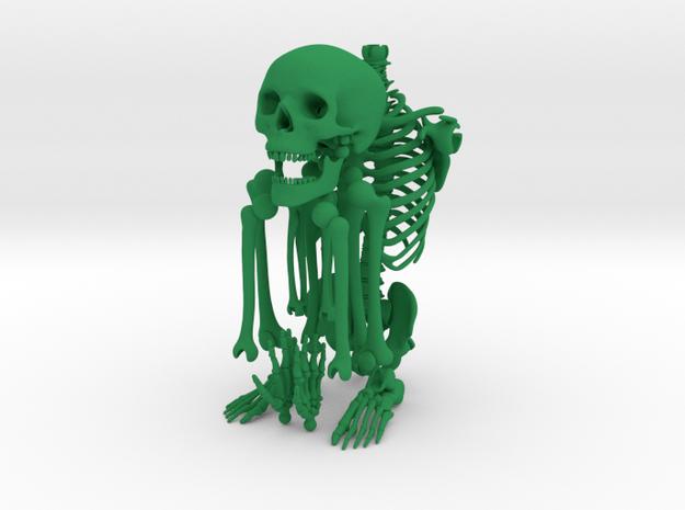 Mr Bones -- Articulated Skeleton 3d printed