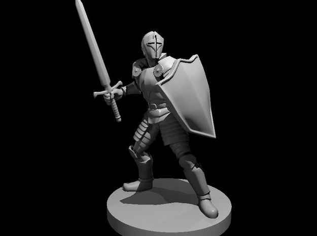 Helmed Male Paladin in Smooth Fine Detail Plastic