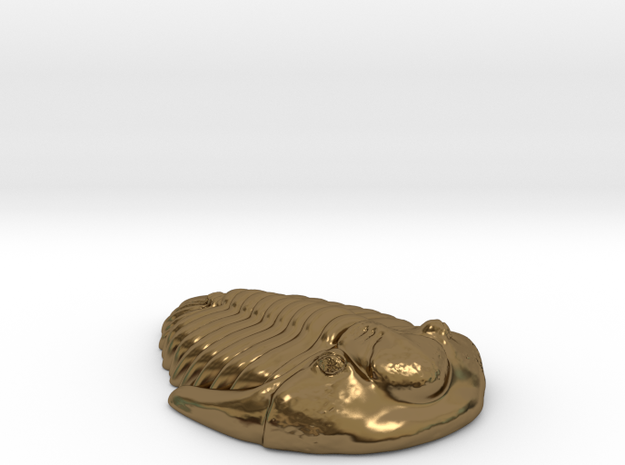 Triolobite Fossil 3d printed
