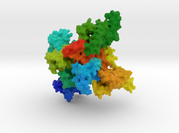 Cardiac Sodium Channel in Natural Full Color Sandstone
