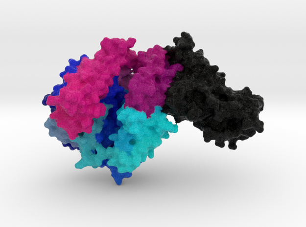 COVID-19 Spike Binding-Domain complexed with ACE2  in Natural Full Color Sandstone