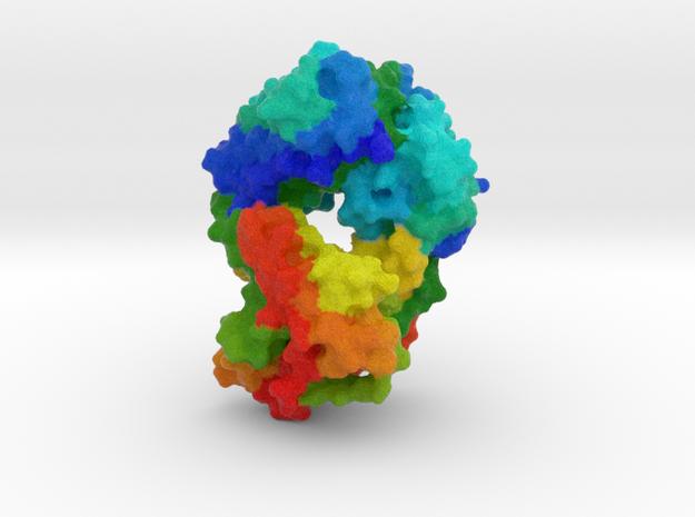 Antibody Fab Fragment in Natural Full Color Sandstone
