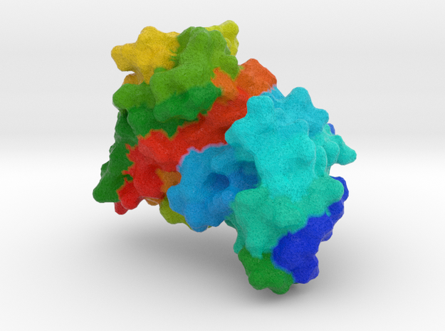 Single Chain Variable Fragment (scFv) in Natural Full Color Sandstone