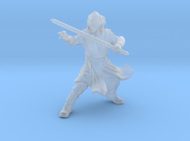 wizard warrior sentinel  in Smooth Fine Detail Plastic