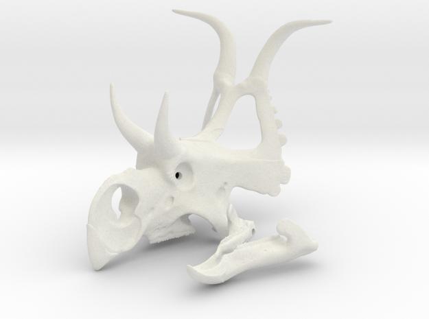 Diabloceratops skull in White Natural Versatile Plastic