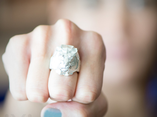Lion Ring - iXi Design - Fashion Rings - Size 7 in Raw Silver