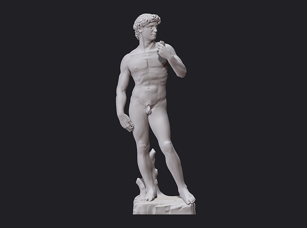 David Statue by Michelangelo 3D print in White Strong & Flexible