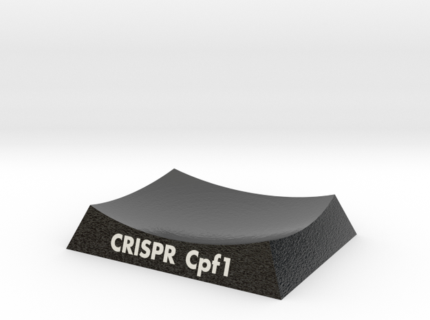 CRISPR-Cpf1 5B43 AR Base in Glossy Full Color Sandstone: Extra Small