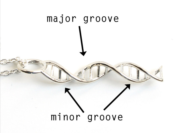 DNA Pendant - Science Jewelry in Polished Silver