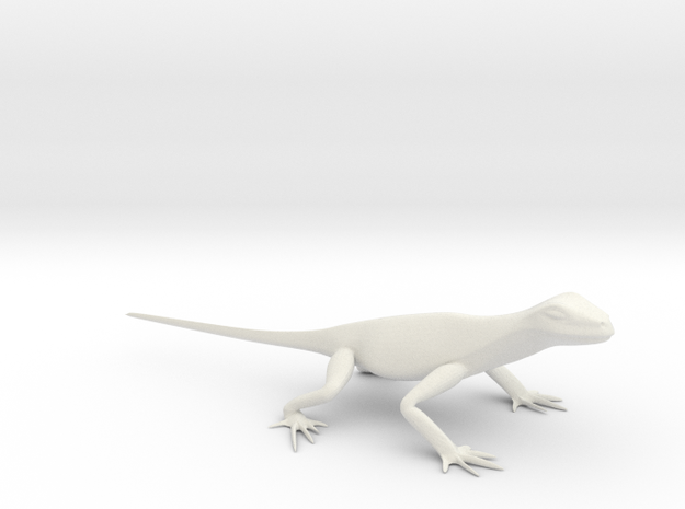 Lizard 8 small 3d printed