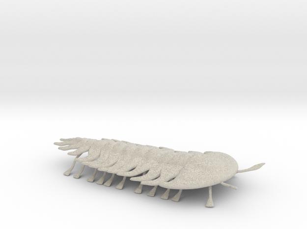 trilobite 3d printed