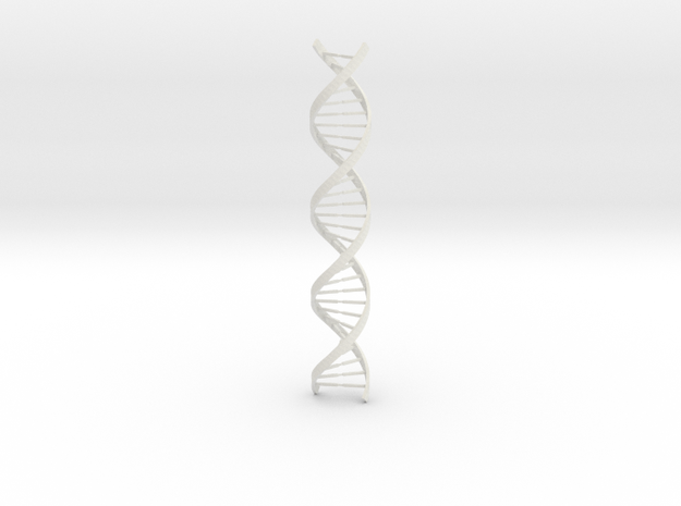DNA Long 3d printed