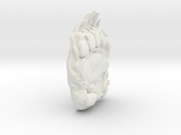 bear paw 3d printed
