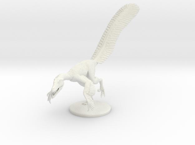 Male Velociraptor (1:12 scale hollow) in White Natural Versatile Plastic
