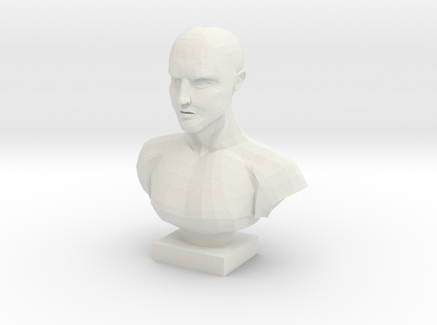 Bust of a Man in White Natural Versatile Plastic