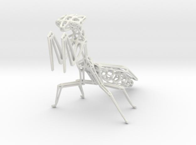 Praying Mantis in White Natural Versatile Plastic