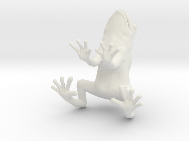 frog 2cm in White Natural Versatile Plastic