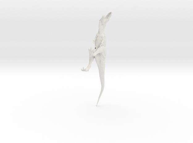 Giganotosaurus 1/144 Krentz v2 in White Natural Versatile Plastic