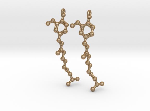 Earrings (Pair)- Molecule- Capsaicin 3d printed