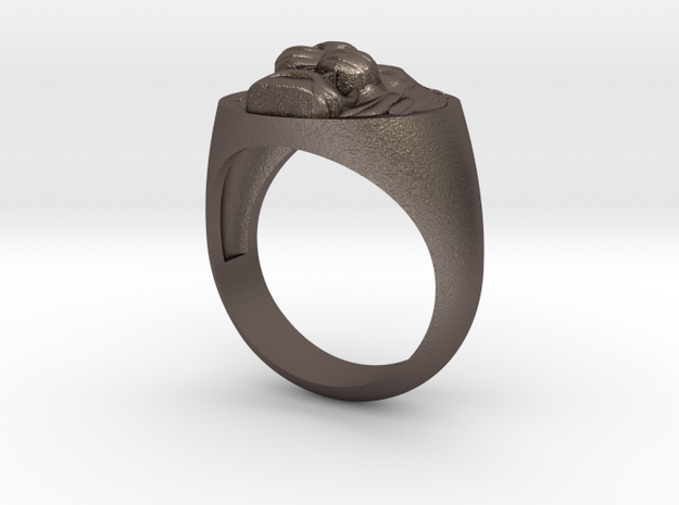 Lion signet ring in Polished Bronzed Silver Steel