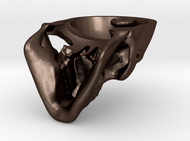Human skull with Ring  3.4 cm 3d printed