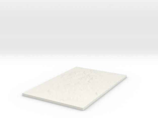 Model of Arran in White Natural Versatile Plastic