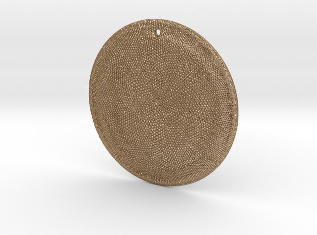 Asteromphalus Diatom pendant ~ 39mm 3d printed