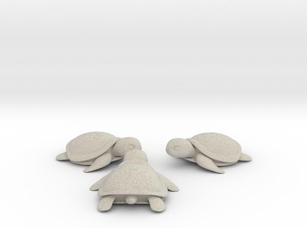 Little Turtle (3 pieces bundle) 3d printed