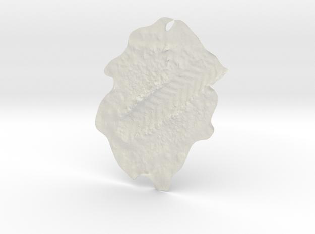 Pneusrevel4re22x5 in White Natural Versatile Plastic