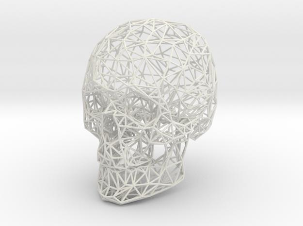 Wireframe Skull Display