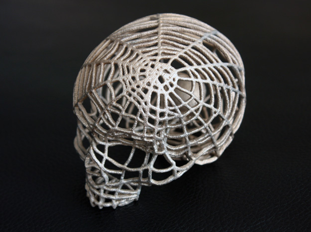 Black Widow Spiderweb Skull