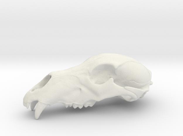 Bear Skull. WT-07. 6cm.  in White Natural Versatile Plastic