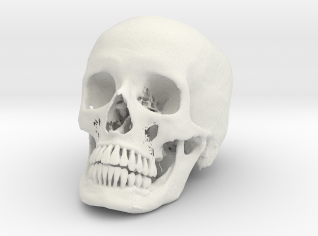 Jack-o'-lantern skull from CT scan, half size