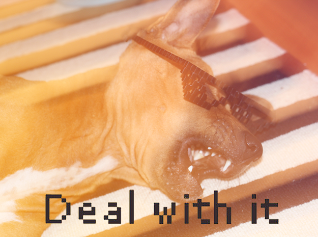 DEAL WITH IT - shades in Black Natural Versatile Plastic