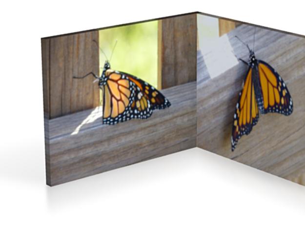 Butterflies 3in 3d printed