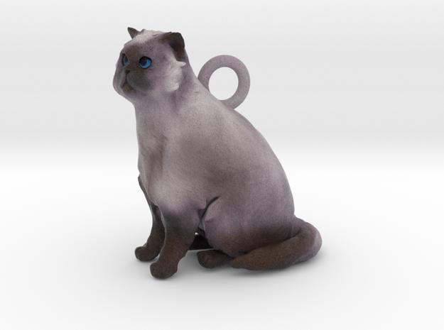 Custom Cat Necklace - Cody 3d printed
