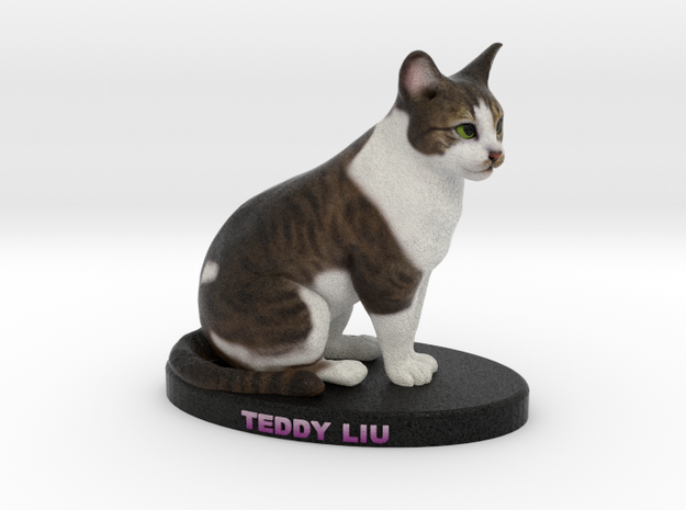 Custom Cat Figurine - Teddy Liu