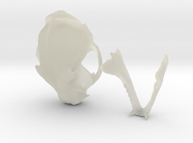 Mini Cat skull ZBrush sculpture 3d printed