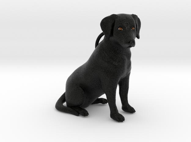 Custom Dog Ornament - Mo in Full Color Sandstone