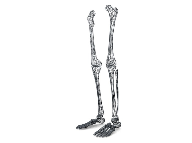 Life Size Poly Legs and Feet - Skeleton in White Natural Versatile Plastic